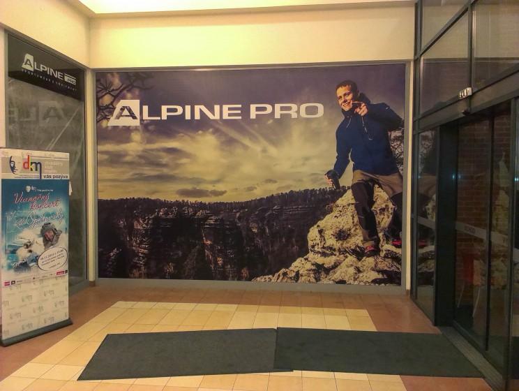 Alpinepro4