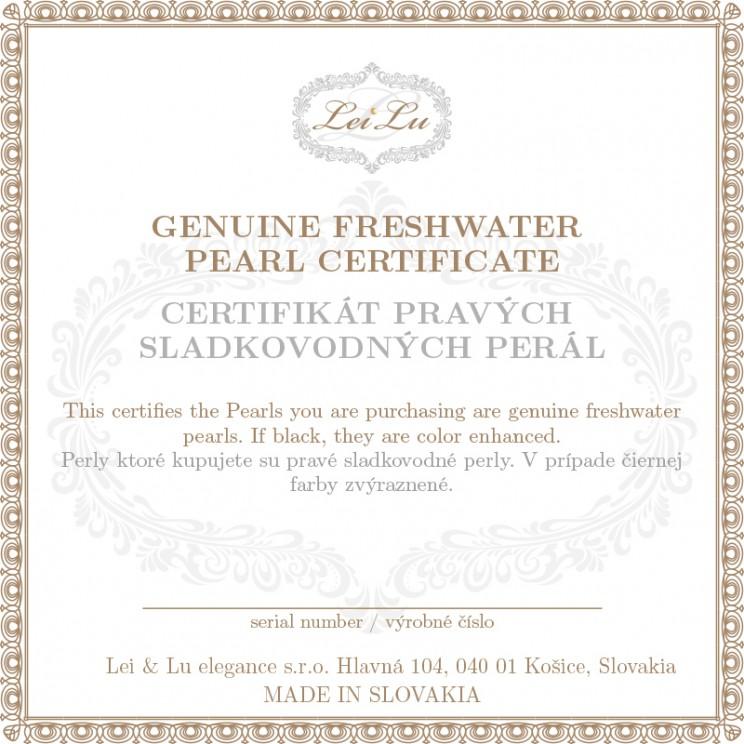 certifikat1-1
