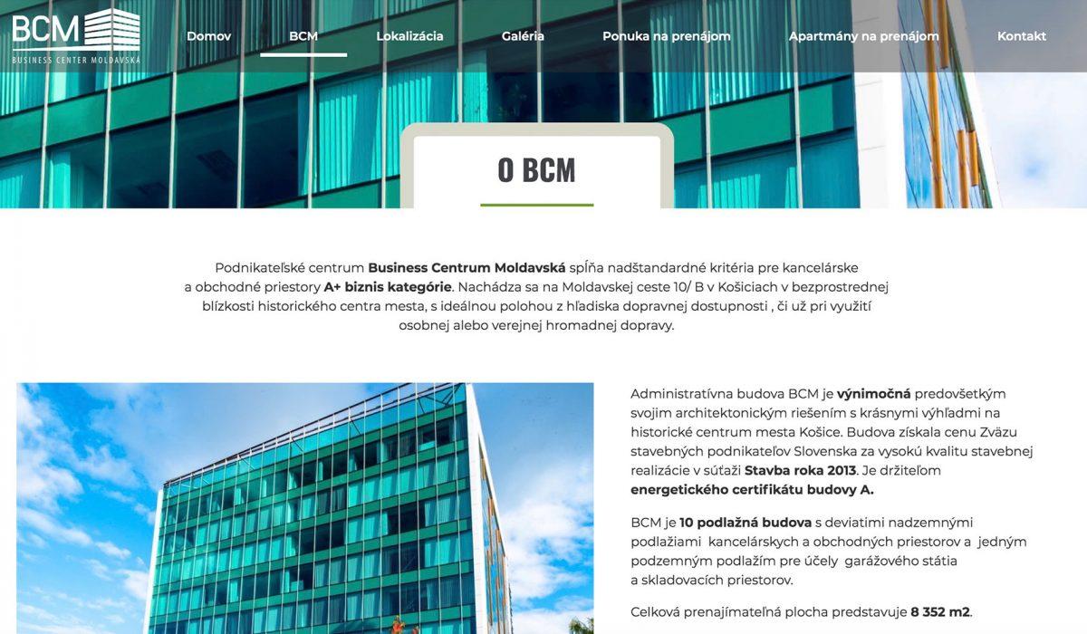 BCM_webdizajn3